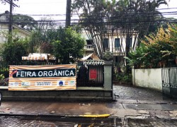 feira organica imperatriz