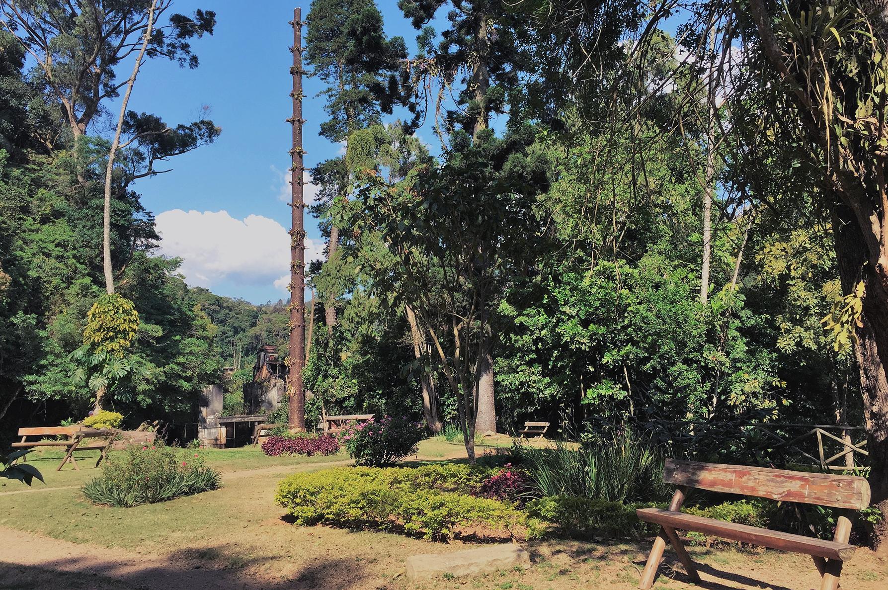 parque natural_2